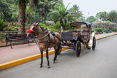 Carriage in Intramuros — Stock Photo