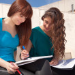 Stock Photo: Women studying