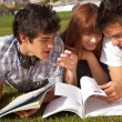 Stock Photo: Friends are studying