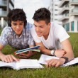 Friends are studying — Stock Photo #13585800