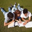 Stockfoto: Friends are studying