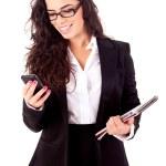 Business woman — Stock Photo #20784947