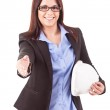 Businesswoman — Stock Photo #20831141