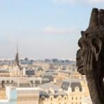 Notre Dame of Paris — Stock Photo