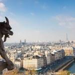 Notre Dame of Paris — Stock Photo #20840833