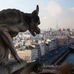 Notre Dame of Paris — Stock Photo #20841139