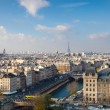 View from Notre Dame of Paris - Foto Stock
