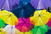 Umbrellas coloring the sky — 图库照片