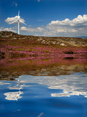Windmill — Photo