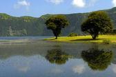 Azores lake of Sete Cidades, at Sao Miguel island, Portugal — Stock Photo