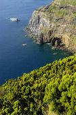 островные мигель азорские острова прибрежных взгляд на s — Стоковое фото
