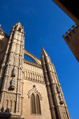 Detail of Mallorca cathedral, in Palma de Mallorca, Spain — Stock Photo