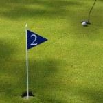 Golf field detail — Stock Photo #23745701