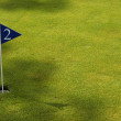 Golf field detail — Stock Photo