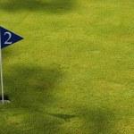 Golf field detail — Stock Photo #23750739