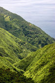 Azores coastal view at s miguel island — Stock Photo