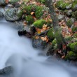 Long exposure in a small river at autumn time — Stock Photo