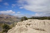 Mallorca hory — Stock fotografie