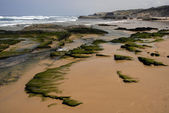 Beach at algarve in the south of portugal — Стоковое фото