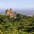 Stock Photo: Famous palace of Pena