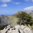 Mallorca mountains — Stock Photo