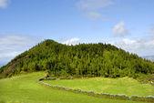 Azores — ストック写真