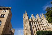 Detail of Mallorca cathedral, — Stock Photo
