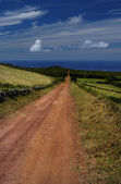 Azores — Stock Photo