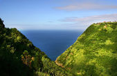 Village at the coast in azores island — Stockfoto