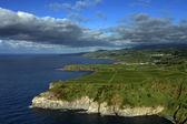 Azores coastal fields — Stock Photo