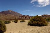 Mountain of el teide in tenerife island — Stock Photo