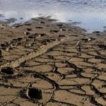 Mud at the lake — Stock Photo #23832513