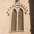 Window - detail of Mallorca cathedral — ストック写真