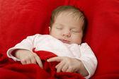 Young baby sleeping — Stock Photo