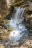 Small waterfall in a summer park — Stock Photo