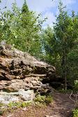 Stone in field near green trees — Stock Photo