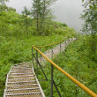 Stock Photo: Metallic stair, lowering to river