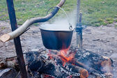 Pot with a meal on a fire — Stock Photo