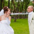 Fiancee holds teeth a tie for a groom in a park on nature — Stock Photo