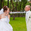 Fiancee holds teeth a tie for a groom in a park on nature — Stock Photo #14104411