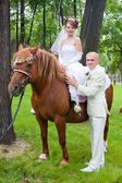 A groom and fiancee sit on a horse — Stock Photo
