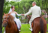 A groom and fiancee sit on two horse — Stock Photo