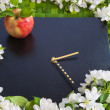 Beautiful designer background with the sprigs of flowering apple — Stok fotoğraf
