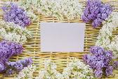 Designer bakgrund från kvistar av vide och blommor — Stockfoto