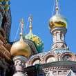 Fragment of the Cathedral of the Savior on Spilled Blood, Saint  — Stock Photo