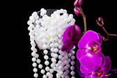 Flowers of pink orchid and beads from white pearls on a black — Stock Photo