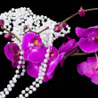 Stock Photo: Flowers of pink orchid and beads from white pearls on black