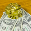 A souvenir is a frog and dollars — Stock Photo