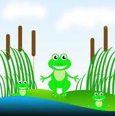 在池塘中的绿色草地上的三个有趣绿色青蛙 — 图库照片