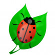 Insect ladybird on green leaves — Stock Photo